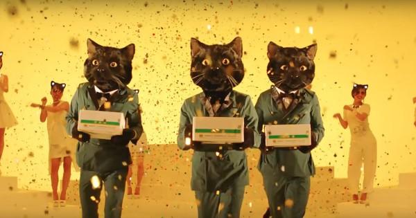 ヤマト運輸、宅急便40周年で新たな「ネコ動画」を公開
