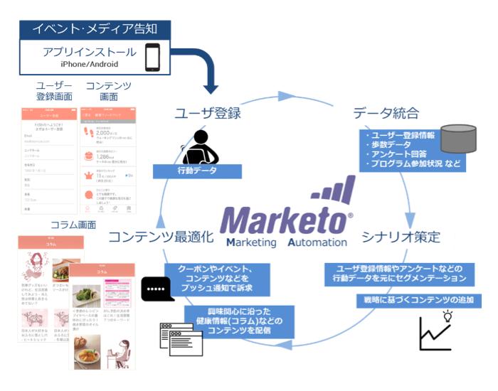 maruketo02