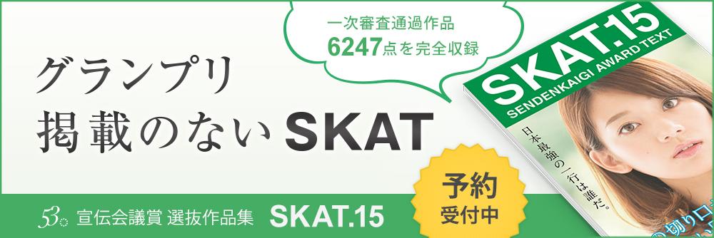 skat-banner