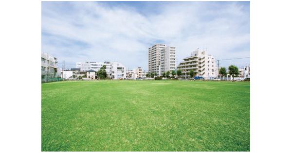 都内で珍しい! 天然芝の大型広場「体験型」イベントと親和性あり
