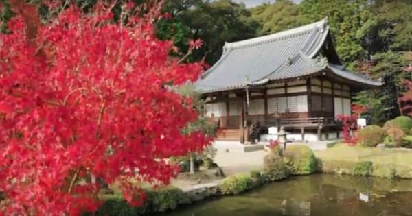 「そうだ 京都、行こう。」 — 東海旅客鉄道が25周年特別企画を実施