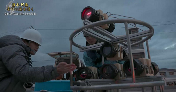 世界初オンデンザメの4K撮影プロジェクトはどう進んだのか?