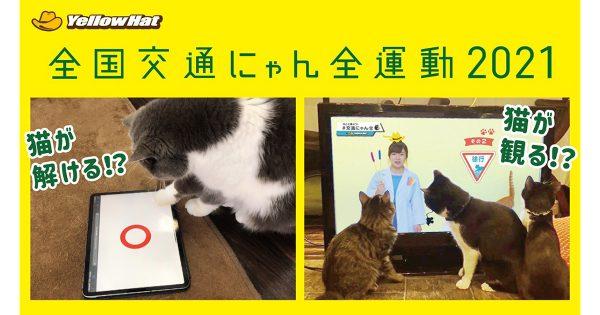 イエローハット、「猫の日」で猫参加型クイズ・テレビCMを公開 京大が監修